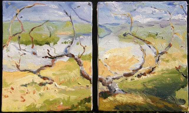 Untitled Landscape (Diptych)