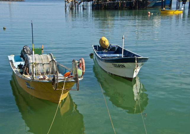Cedros Island Mexico Fishing Boats