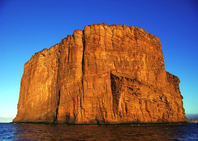 Guadalupe Island Outer Rock Baja Mexico