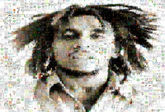 Bob Marley Photo Collage by Michael Verlangieri