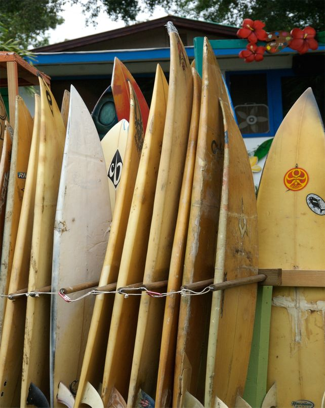North Shore Surf Boards  HUGE Art Photo Surfing