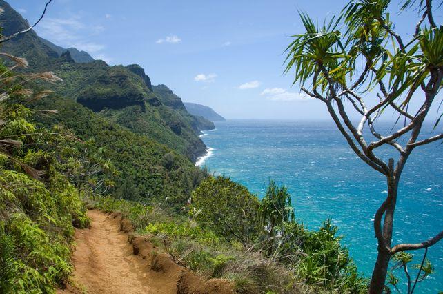 Trail to Na Pali Coast  Kauai Hawaii photograph