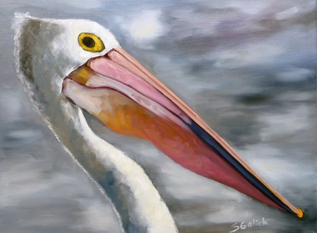 Outback Pelican