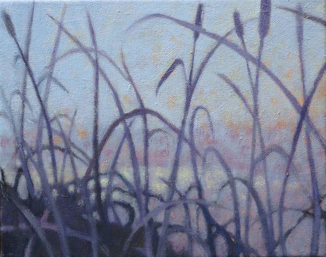 Grasslands #14
