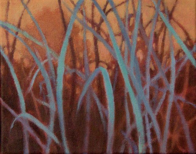 Grasslands #5