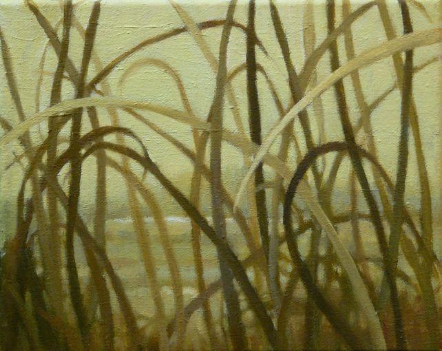 Grasslands #16
