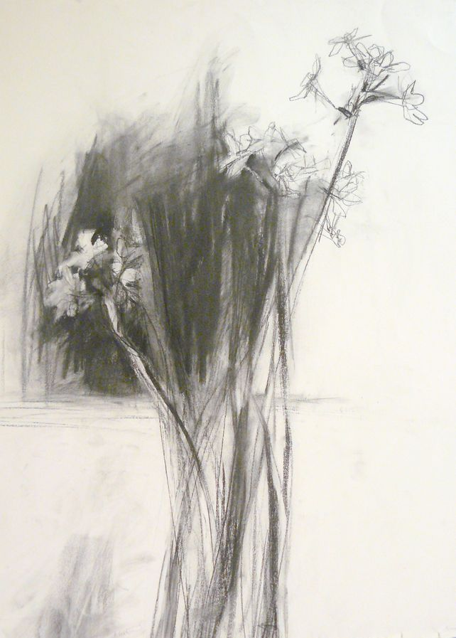 Narcissus I