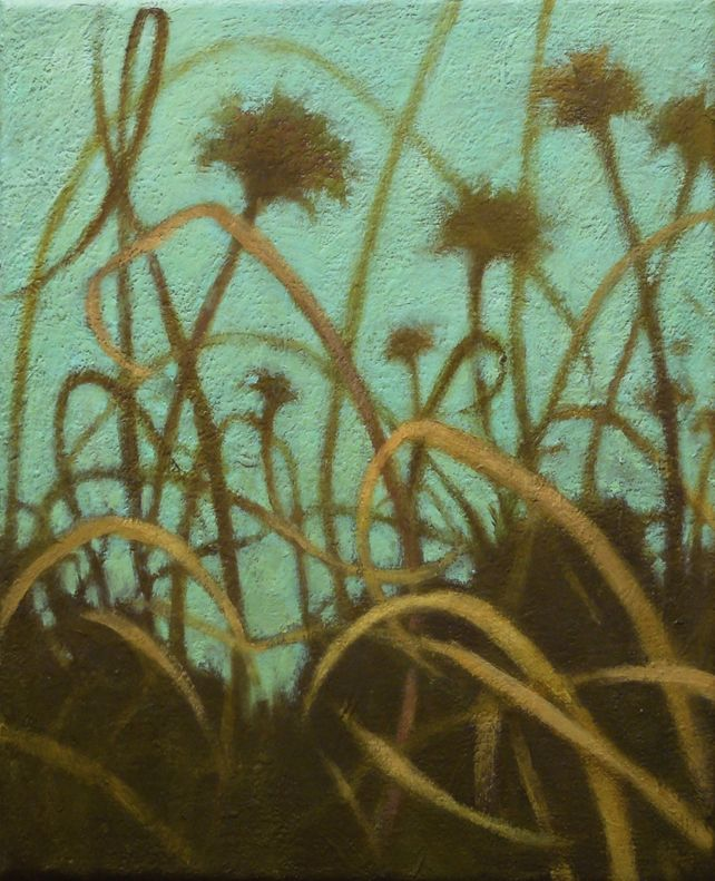 Grasslands #15