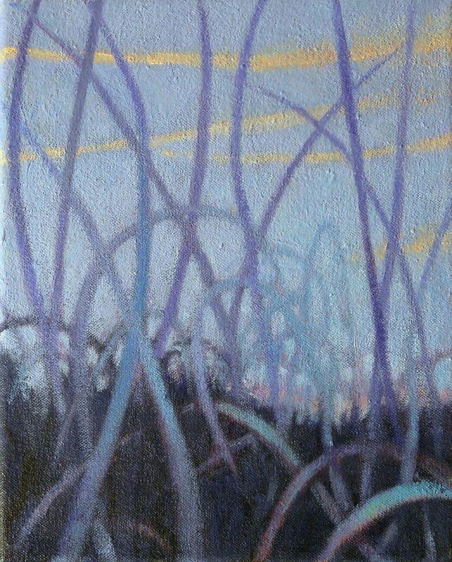 Grasslands #12