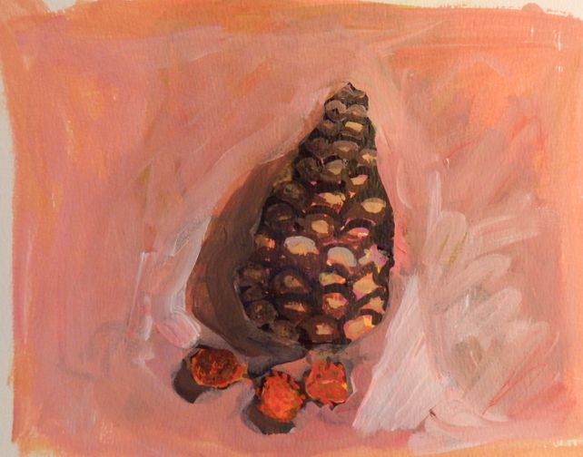 Pinecone and Dogwood Fruit