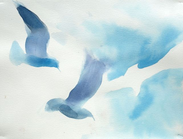 Birds XLII