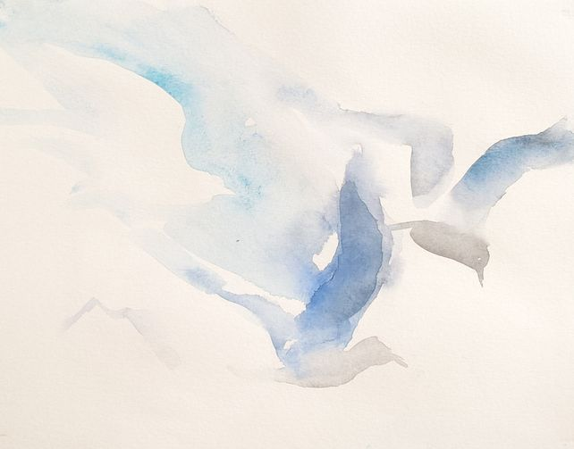 Birds XXXIV
