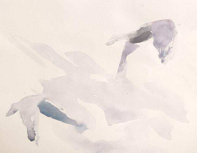 Birds XXXVI