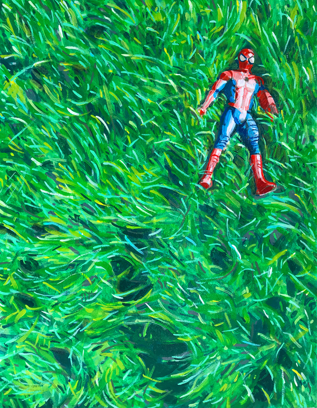 Spider in the Grass