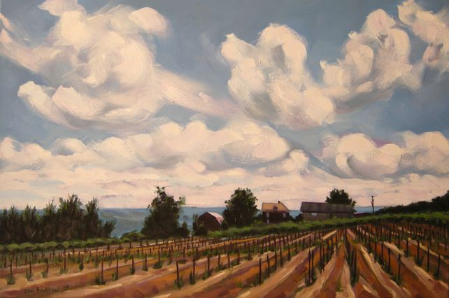Rolling Clouds, Konstantin Frank Vineyards
