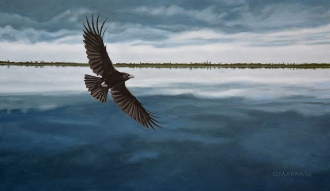 Raven Over Dark Water