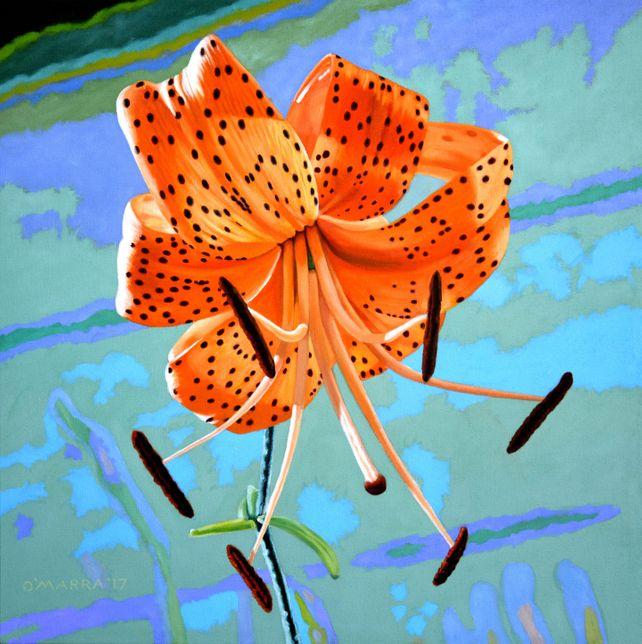 My Tiger Lily