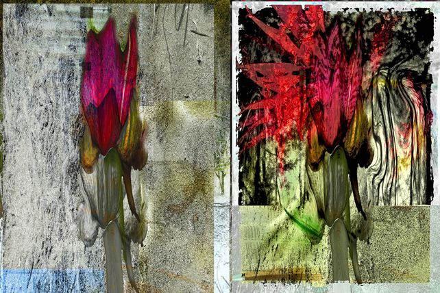 abstract nature Opus I
