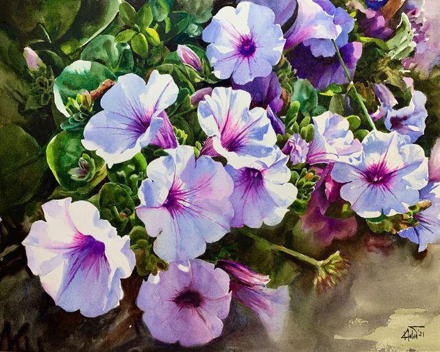 Flower Petunias_02