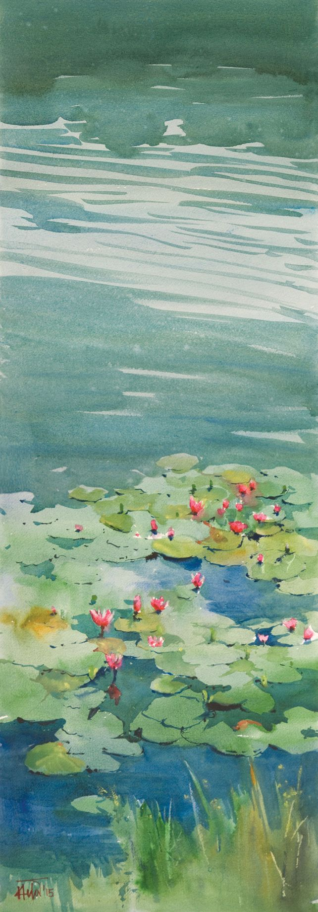 Water lily_02