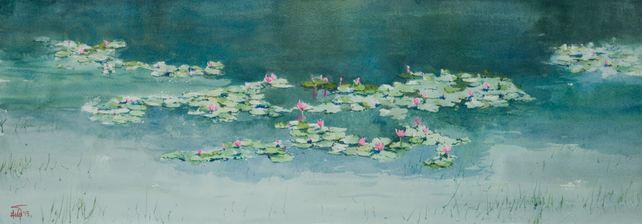 Water Lily_01