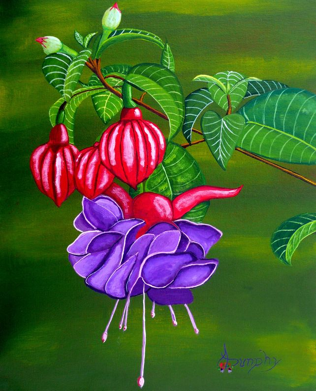 Fuchsia Purple