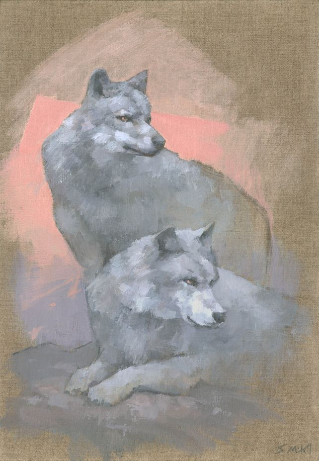 Gaze Of The Grey Wolves