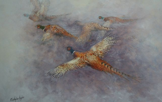 Flight of the Pheasants