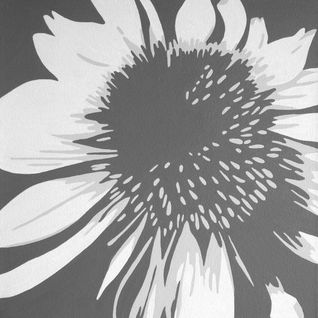 Echinacea Study