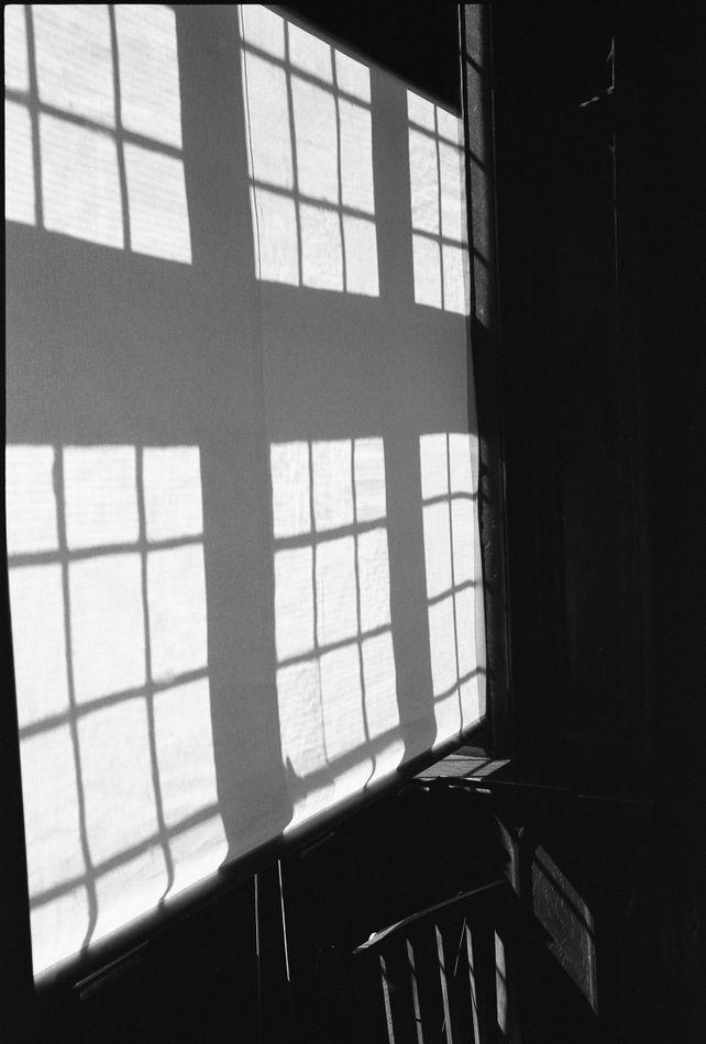 Edition 3/10 Window Blinds, Felbrigg Hall, Norfolk