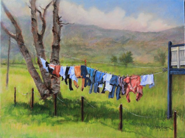 Birch Tree Laundry