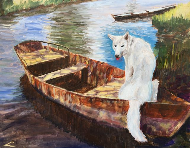 Dog in the boat