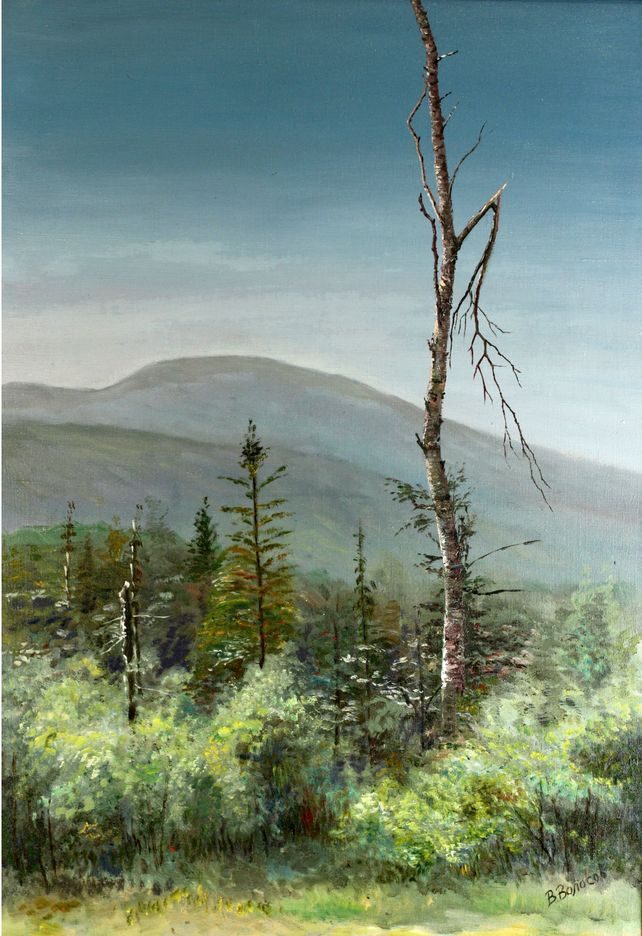 Broken birch