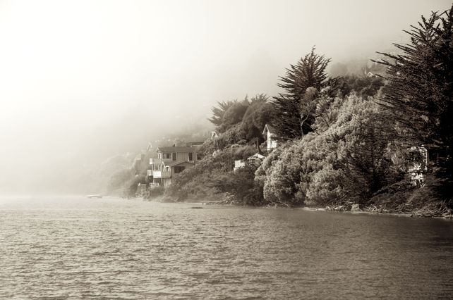 Russian River in Fog