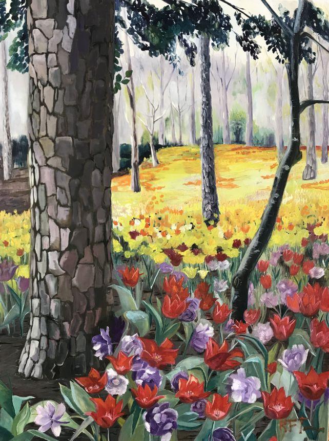 Spring Tulips Woodland at Garvan Botanical Gardens
