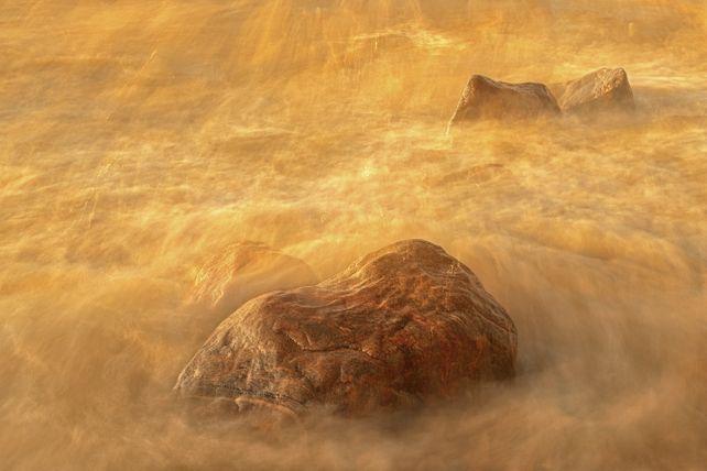 'Golden Light' by Mike Grandmaison