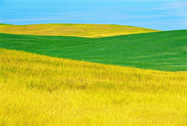 'Prairie Abstract' by Mike Grandmaison