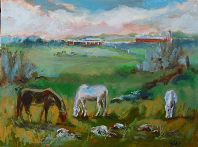 Farming Horse Grazers