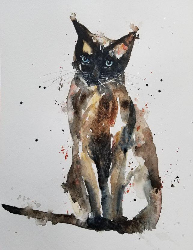 Sal the Siamese Cat