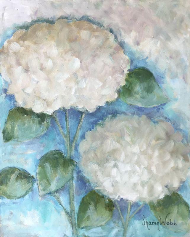 Two White Hydrangeas