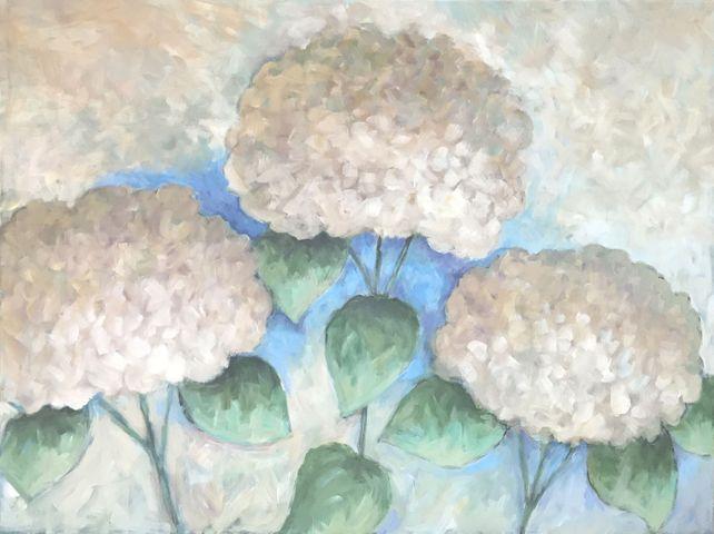 Three Hydrangeas
