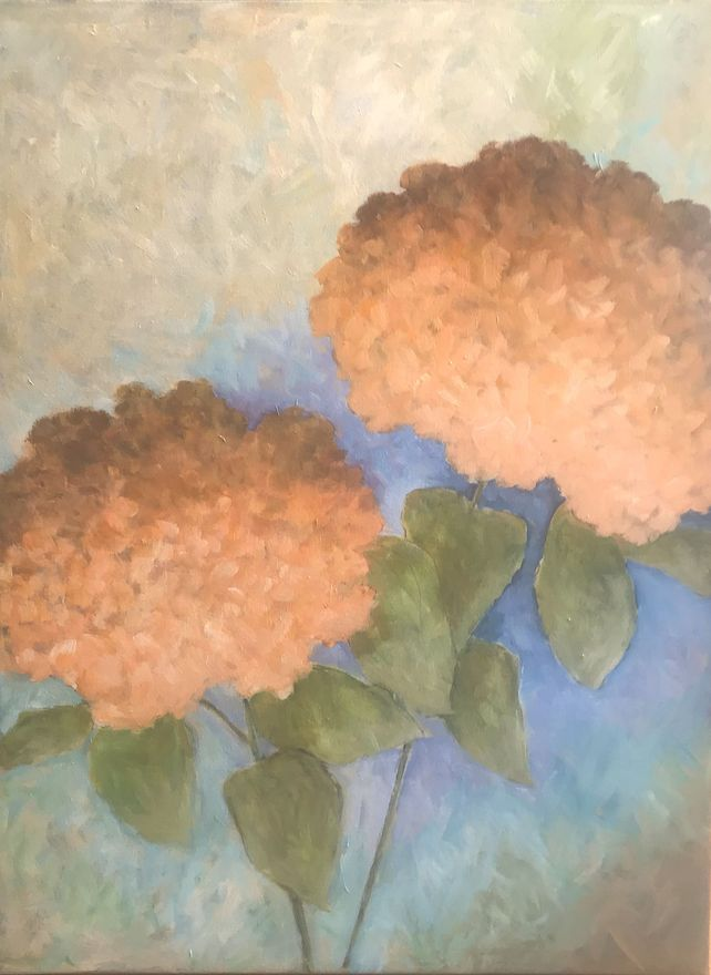 Two Peach Hydrangeas