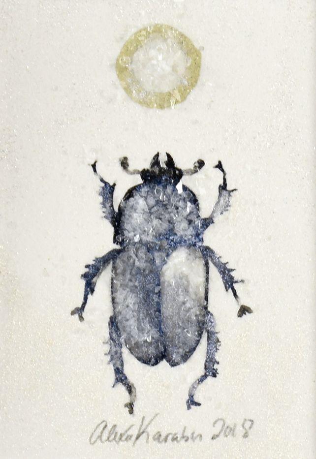 Blue Beetle (Lamprima Adolphinae)