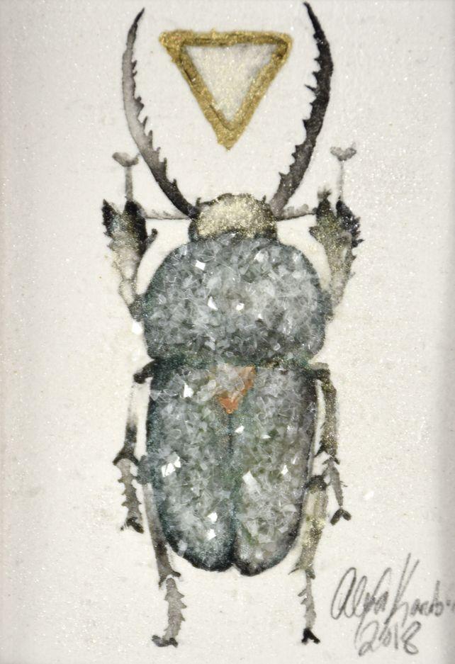 Beetle (Lamprima Adolphinae)