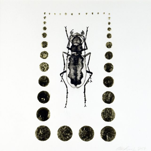 Tiger Beetle / Original Ink Painting with Gold