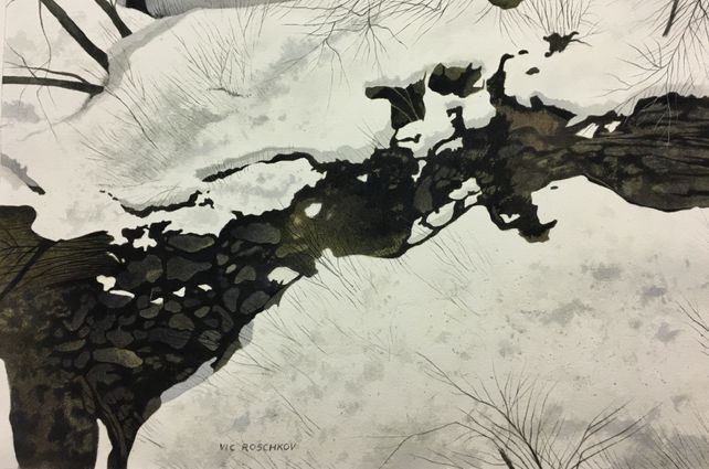 Icey Stream