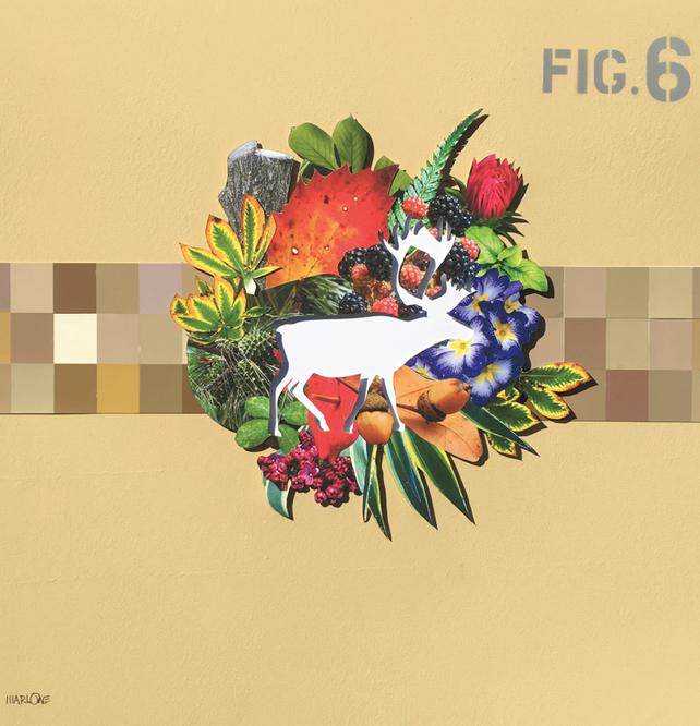 Fig 9 Deer