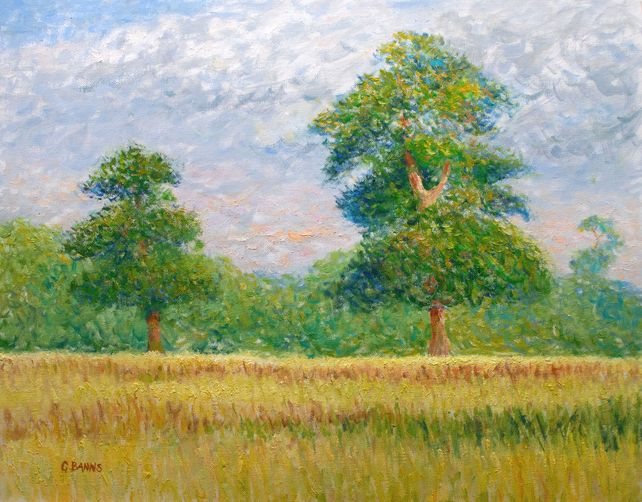 Two Oak Trees in a Field