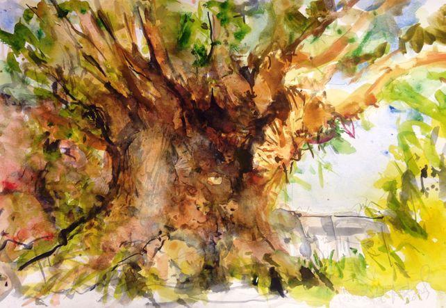 Tree of Life Disneyworld
