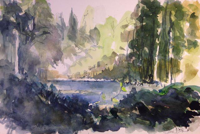 Near Silver Falls Oregon